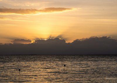 Sonnenuntergang über dem Meer auf Palawan