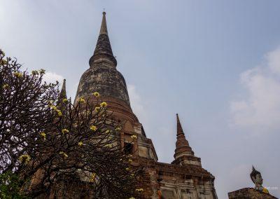Tempel in Ayutthaya in Thailand